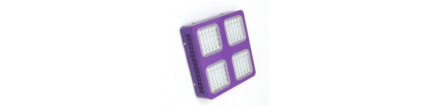 Grossiste Leds Cultilite