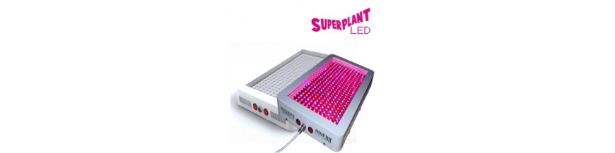 Grossiste LEDs SuperPlant